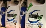 La EPA de EE.UU. reafirma que el glifosato no causa cáncer