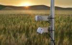 A medir las emisiones de carbono de cultivos bioenergéticos