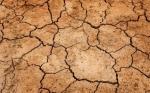 Se espera prolongada sequía durante el invierno en EEUU
