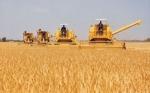 Bolivia: Los biocombustibles y agroindustria pueden restituir $us 10.000 MM a las RIN