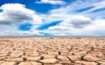 El proyecto de investigación empodera a los agricultores y agronegocios africanos para adaptarse al cambio climático por WUR, Países bajos