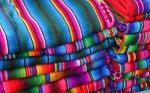 Los agricultores mexicanos resisten el intento del gobierno de prohibir el algodón transgénico