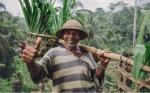 Percepción pública de los cultivos biotecnológicos en Indonesia