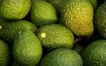 Canadá quiere más productos Agro Mexicanos