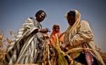 La postura anti-OGM de Europa está matando a los africanos