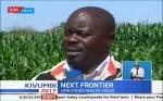 Kenia: los ensayos a campo demostraron que el maíz GM rinde un 40% más que el convencional