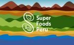 Perú: la exportación no tradicional sumará US$11.820 millones