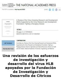 Una revisión de los esfuerzos de investigación y desarrollo del virus HLB apoyados por la Fundación de Investigación y Desarrollo de Cítricos