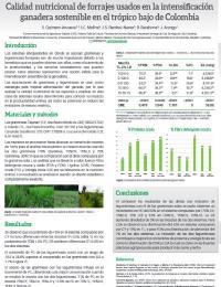 Calidad nutricional de forrajes usados en la intensificación ganadera sostenible en el trópico bajo de Colombia