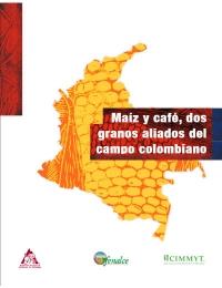 Maíz y café, dos granos aliados del campo colombiano