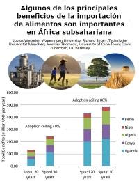 Algunos de los principales beneficios de la importación de alimentos son importantes en África subsahariana
