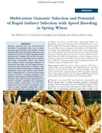 Selección genómica multivariada y potencial de selección rápida indirecta con mejora genética rápida en trigo de primavera