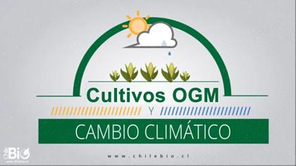 Cultivos OGM para hacer frente al Cambio Climático