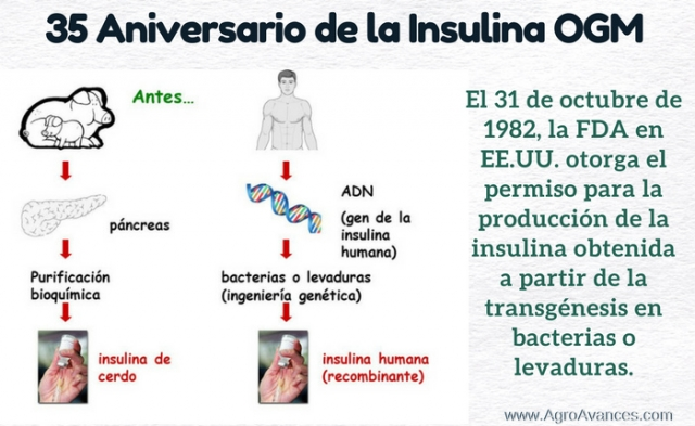 35 Aniversario de la Insulina a partir de OGM