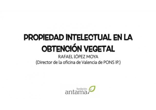 Propiedad intelectual en obtención vegetal