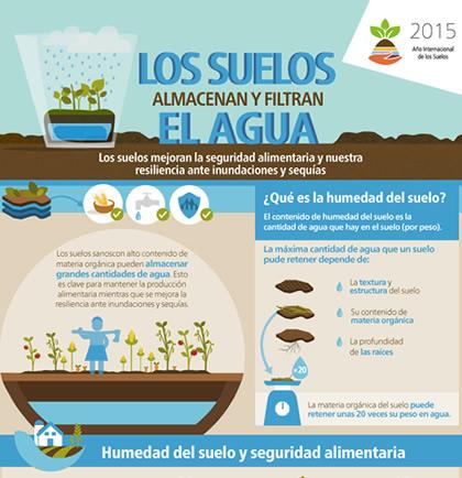 Los suelos almacenan y filtran agua