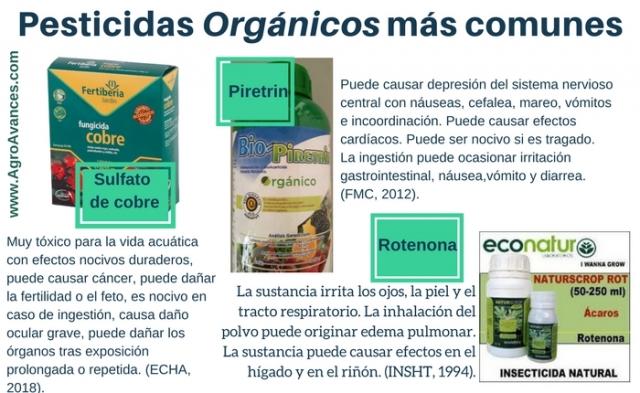 Pesticidas Orgánicos: No es una contradicción