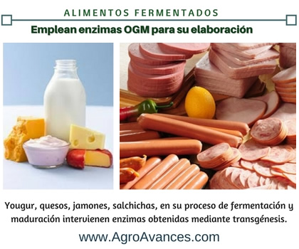 Alimentos que utilizan enzimas OGM