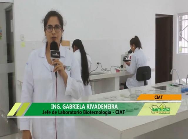 Conociendo un poco más del Laboratorio de Biotecnología del CIAT - Bolivia