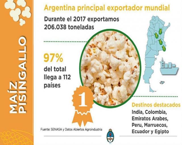 Maíz Pisingallo: la Argentina se consolida como el principal exportador mundial