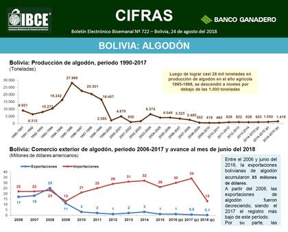 Bolivia: Algodón