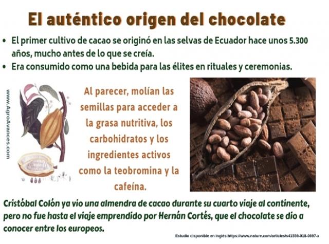El auténtico origen del chocolate