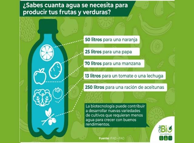 ¿Cuánta agua se necesita para producir tus alimentos?
