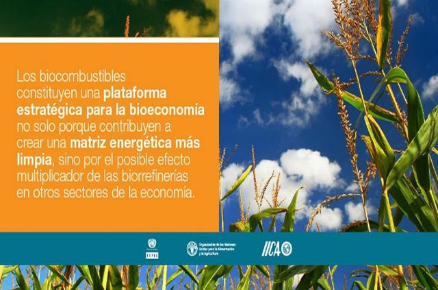 Biocombustibles y Bioeconomía