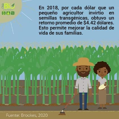 25 años de beneficios socioeconómicos y ambientales de los cultivos transgénicos